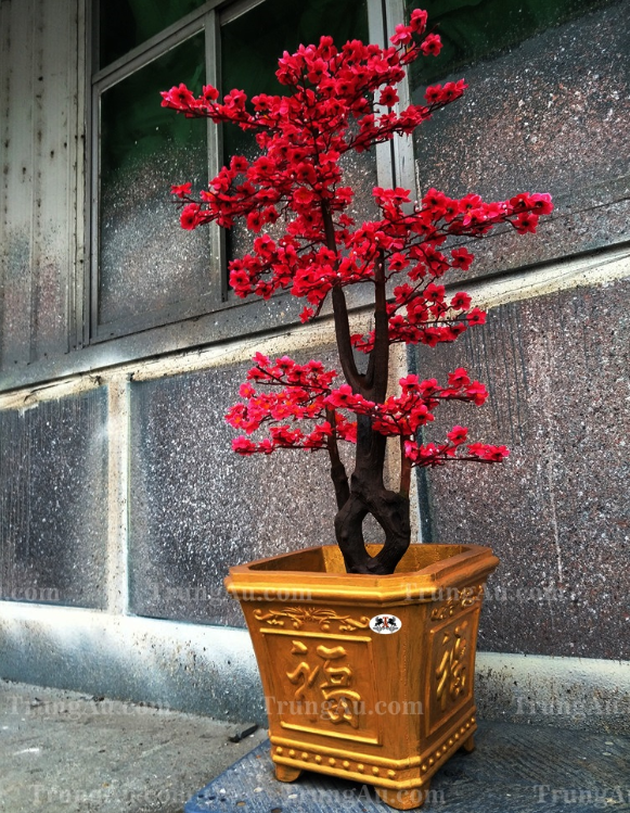 Khuôn Chậu Hoa